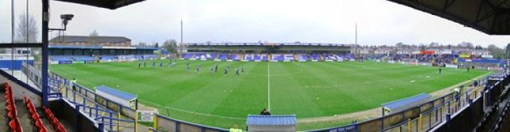 cropped-moss_rose_stadium_panoramic_21.jpg